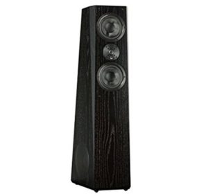 SVS Ultra Tower - Best Floor Speakers