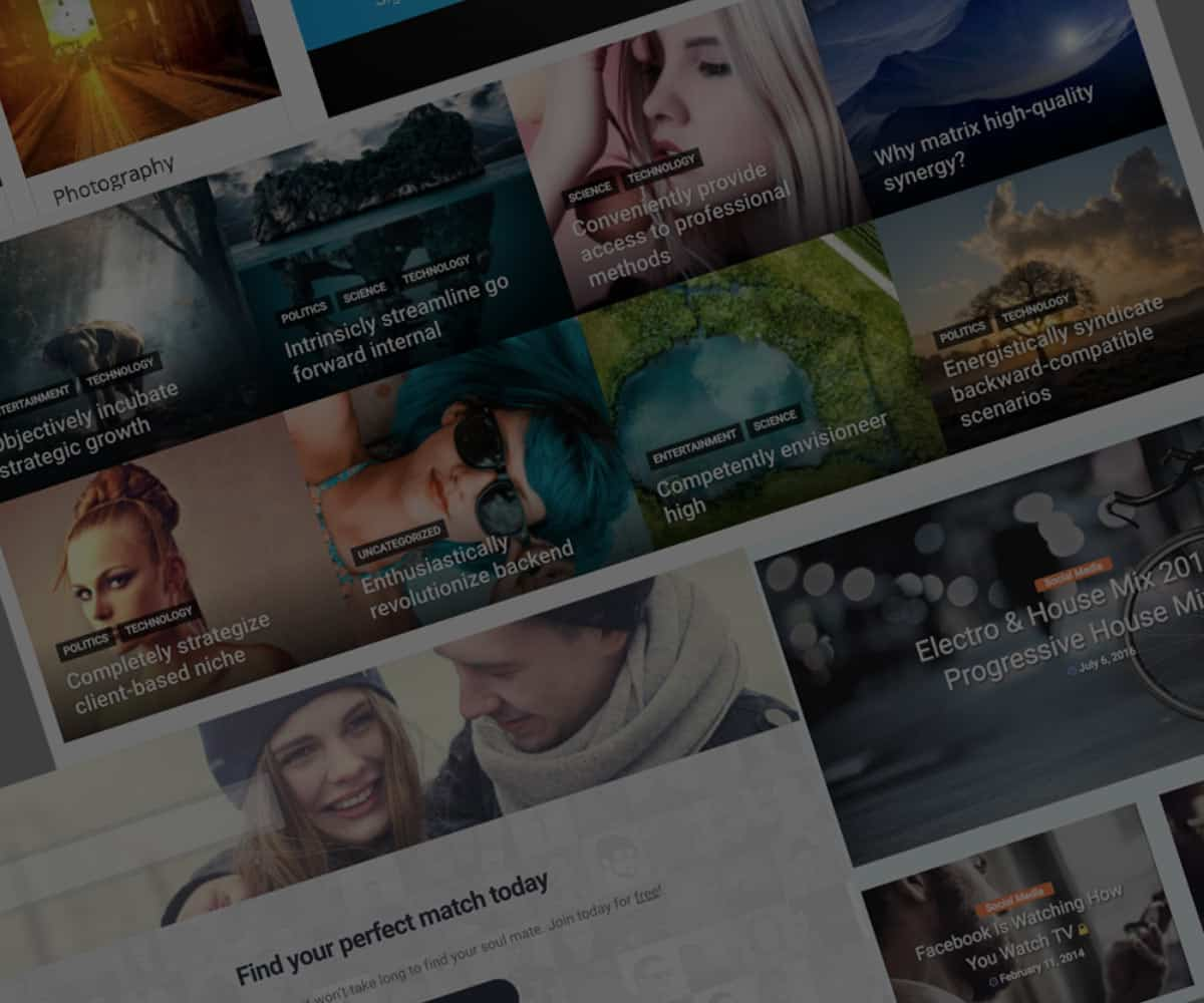 Premium and Cheap WordPress Themes